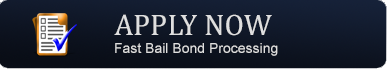 Bail Bond Application